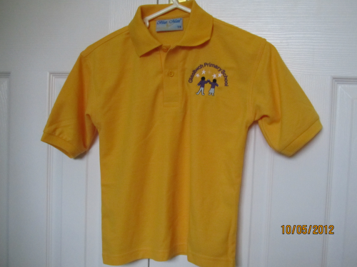 Glasllwch Polo Shirt